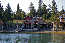 Kachemak Bay Wilderness Lodge - Rebeca Castillo